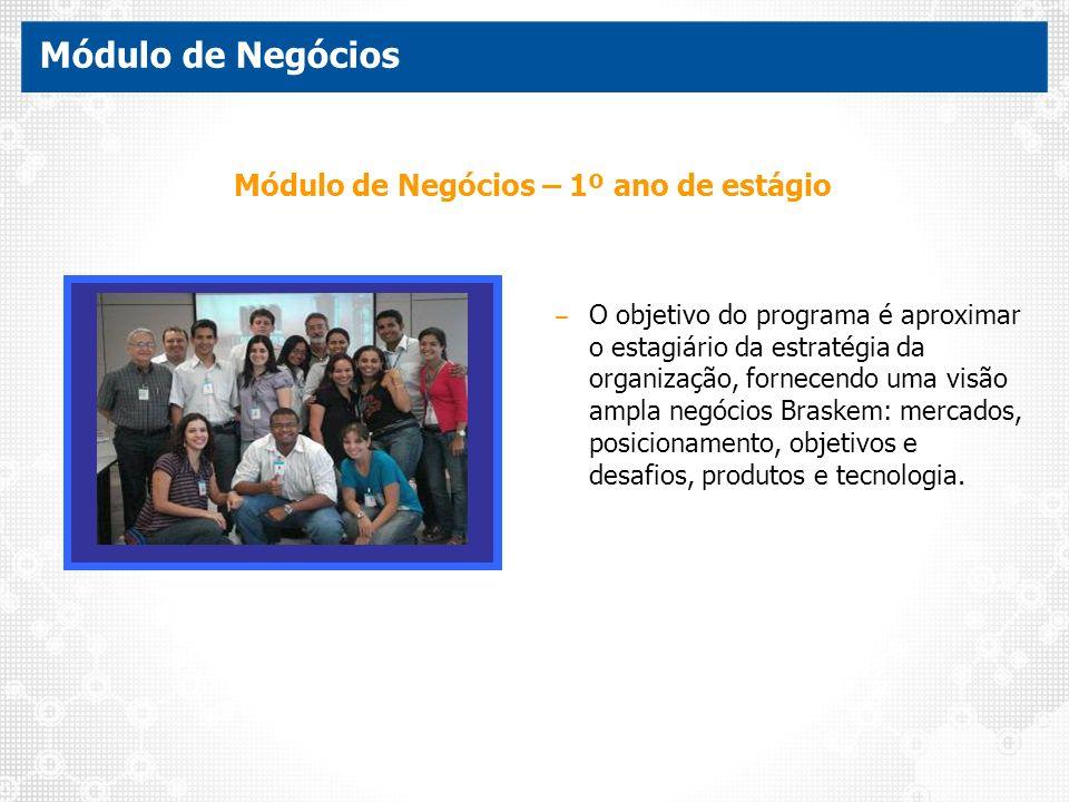 Módulo de Negócios – 1º ano de estágio – O objetivo do programa é aproximar o estagiário da estratégia da organização, fornecendo uma visão ampla negó