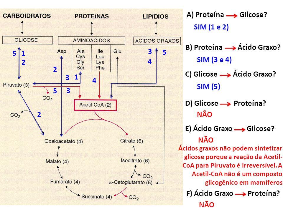 A) Proteína Glicose? SIM (1 e 2) NÃO 1 1 2 2 2 B) Proteína Ácido Graxo? SIM (3 e 4) 3 3 3 4 4 C) Glicose Ácido Graxo? SIM (5) 5 5 5 D) Glicose Proteín