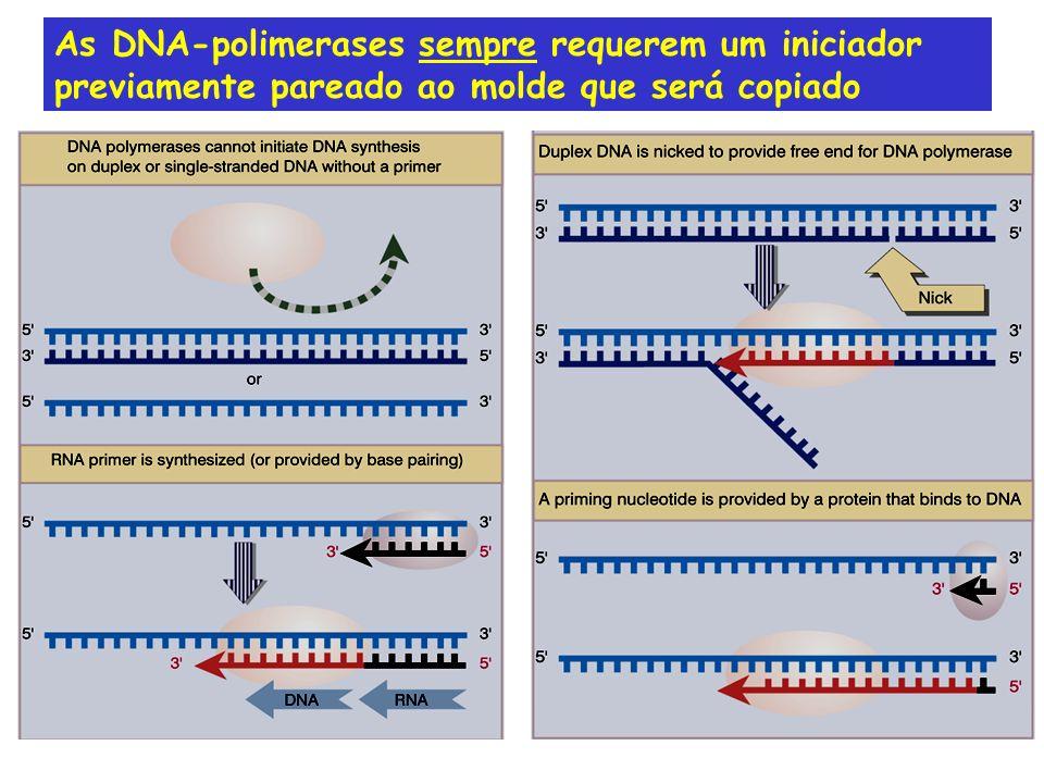 As DNA-polimerases sempre requerem um iniciador previamente pareado ao molde que será copiado