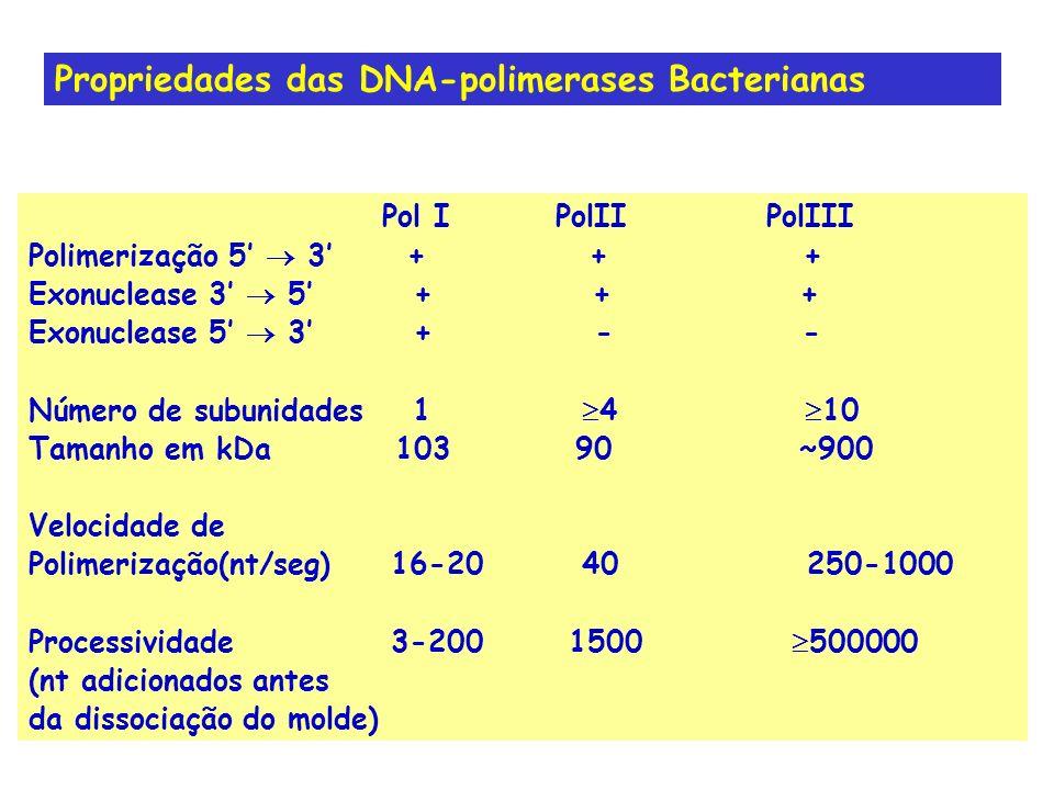 Propriedades das DNA-polimerases Bacterianas Pol IPolIIPolIII Polimerização 5 3 + + + Exonuclease 3 5 + + + Exonuclease 5 3 + - - Número de subunidade