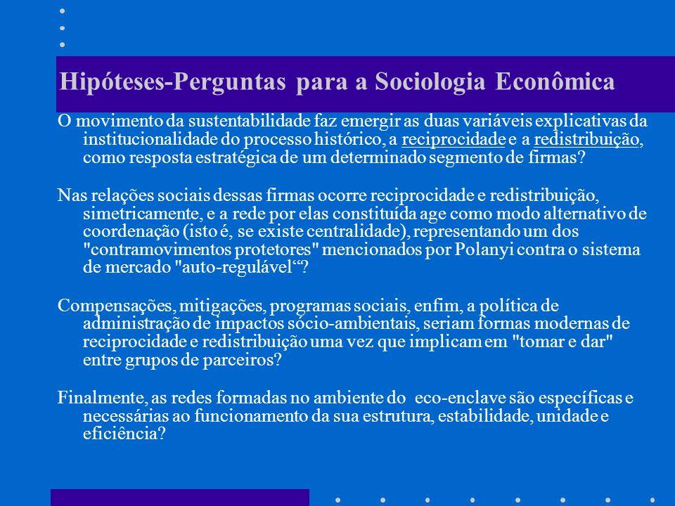 Hipóteses-Perguntas para a Sociologia Econômica O movimento da sustentabilidade faz emergir as duas variáveis explicativas da institucionalidade do processo histórico, a reciprocidade e a redistribuição, como resposta estratégica de um determinado segmento de firmas.