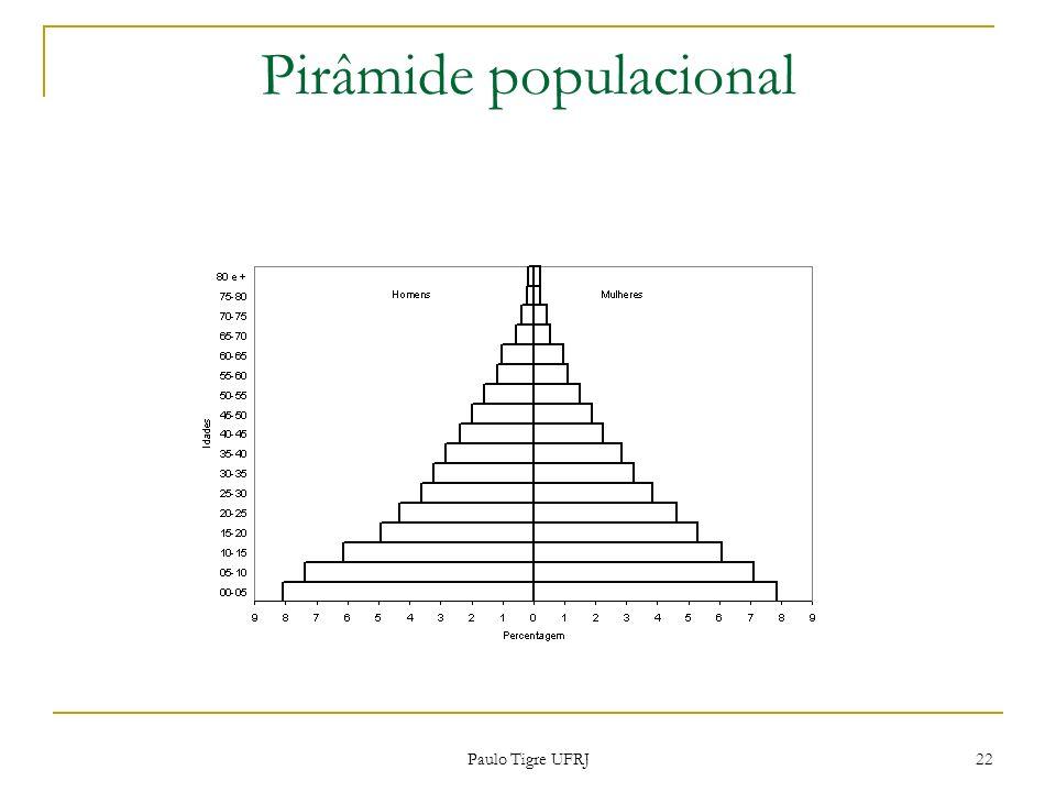 Pirâmide populacional 22 Paulo Tigre UFRJ
