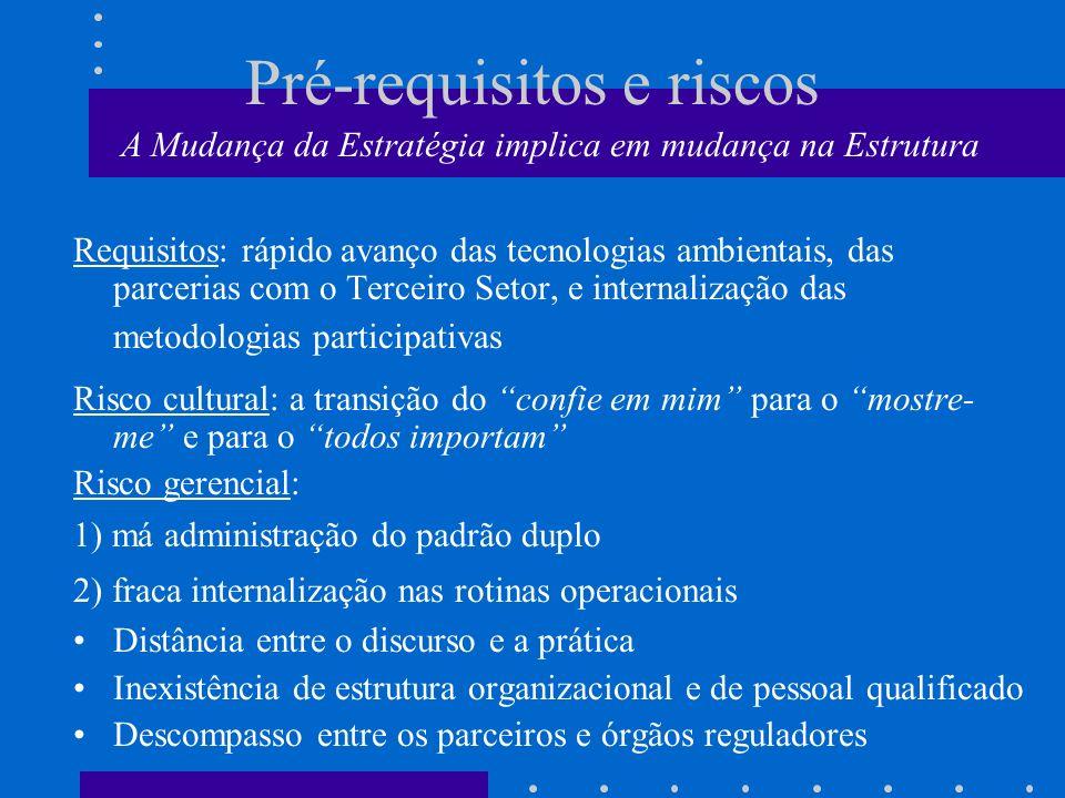 Pré-requisitos e riscos A Mudança da Estratégia implica em mudança na Estrutura Requisitos: rápido avanço das tecnologias ambientais, das parcerias co