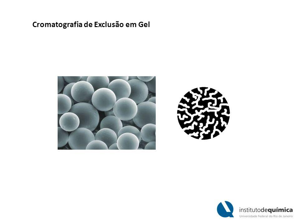 Cromatografia de Exclusão em Gel