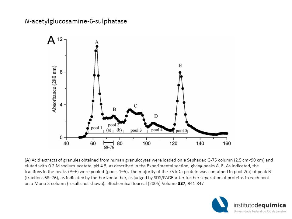 (A) Acid extracts of granules obtained from human granulocytes were loaded on a Sephadex G-75 column (2.5 cm×90 cm) and eluted with 0.2 M sodium acetate, pH 4.5, as described in the Experimental section, giving peaks A–E.