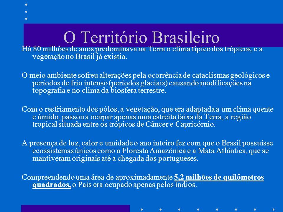 O Território Brasileiro Há 80 milhões de anos predominava na Terra o clima típico dos trópicos, e a vegetação no Brasil já existia. O meio ambiente so