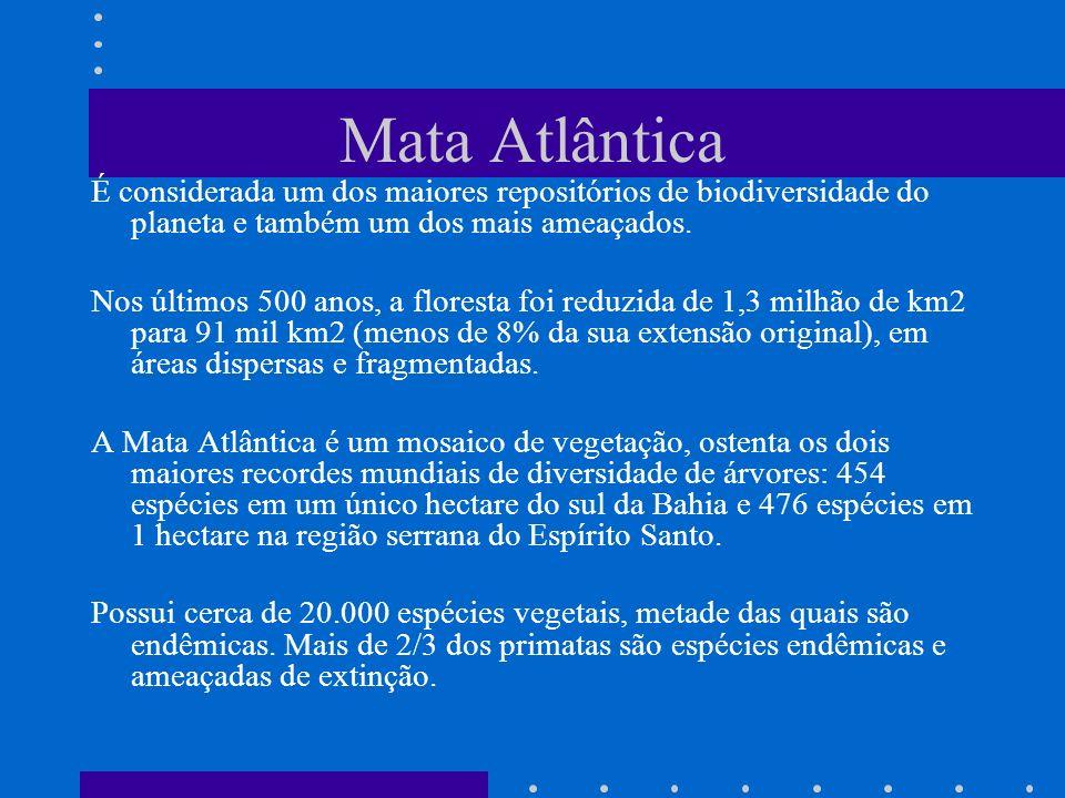 Mata Atlântica É considerada um dos maiores repositórios de biodiversidade do planeta e também um dos mais ameaçados. Nos últimos 500 anos, a floresta