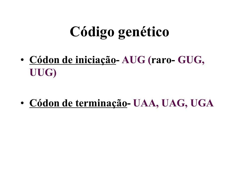 Código genético Códon de iniciação- AUG (raro- GUG, UUG) Códon de terminação- UAA, UAG, UGA