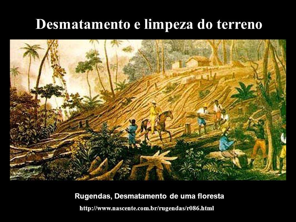 Desmatamento e limpeza do terreno Rugendas, Desmatamento de uma floresta http://www.nascente.com.br/rugendas/r086.html