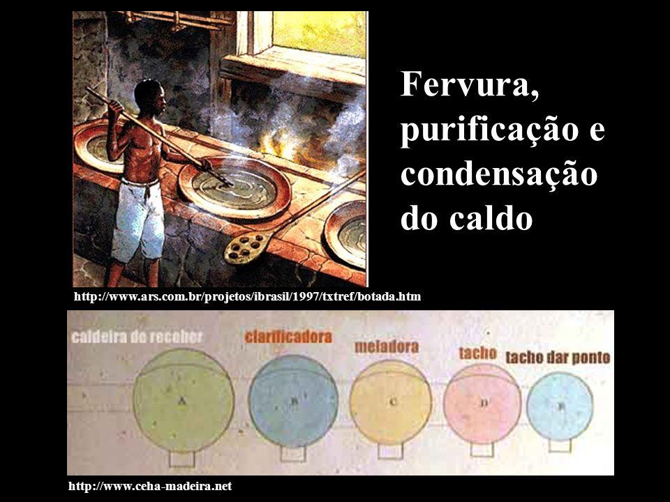 http://www.ars.com.br/projetos/ibrasil/1997/txtref/botada.htm http://www.ceha-madeira.net Fervura, purificação e condensação do caldo