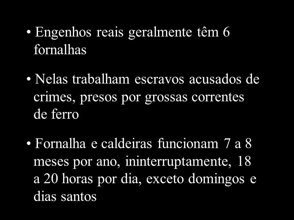 Engenhos reais geralmente têm 6 fornalhas Nelas trabalham escravos acusados de crimes, presos por grossas correntes de ferro Fornalha e caldeiras func