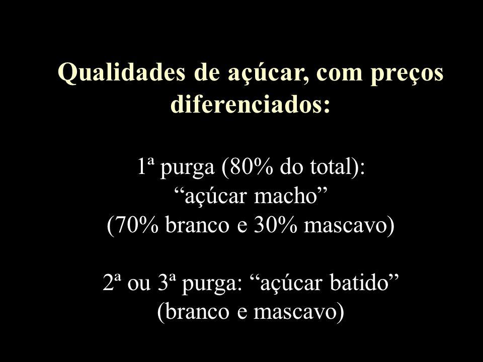 Qualidades de açúcar, com preços diferenciados: 1ª purga (80% do total): açúcar macho (70% branco e 30% mascavo) 2ª ou 3ª purga: açúcar batido (branco