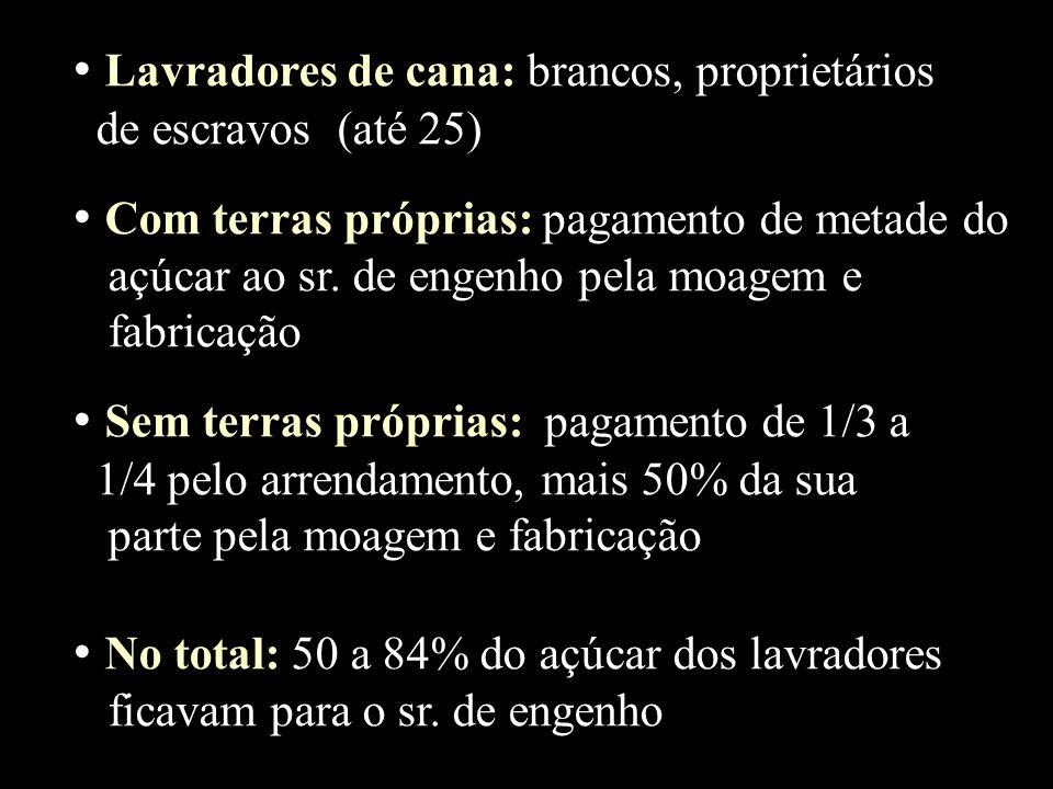 Lavradores de cana: brancos, proprietários de escravos (até 25) Com terras próprias: pagamento de metade do açúcar ao sr. de engenho pela moagem e fab