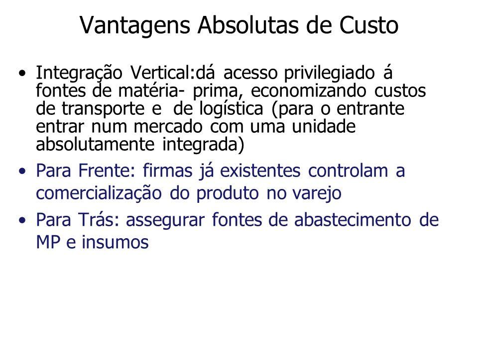 Vantagens Absolutas de Custo Integração Vertical:dá acesso privilegiado á fontes de matéria- prima, economizando custos de transporte e de logística (