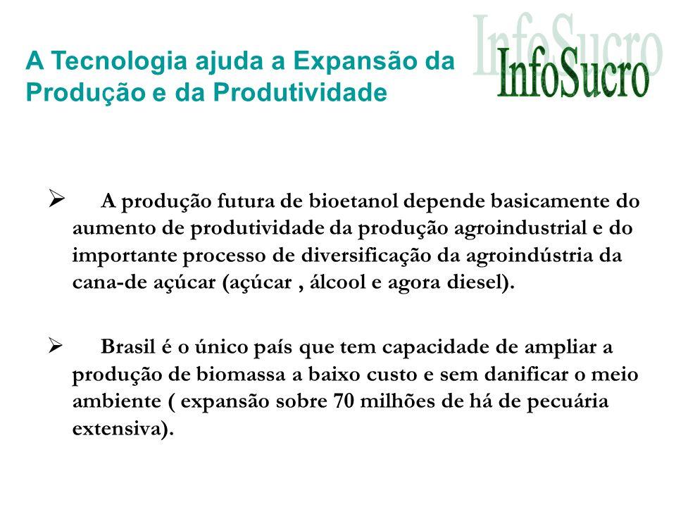 A produção futura de bioetanol depende basicamente do aumento de produtividade da produção agroindustrial e do importante processo de diversificação da agroindústria da cana-de açúcar (açúcar, álcool e agora diesel).