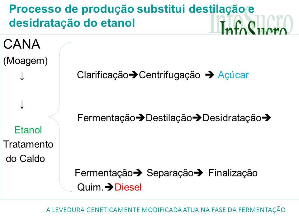 CANA (Moagem) Clarificação Centrifugação Açúcar Fermentação Destilação Desidratação Etanol Tratamento do Caldo Fermentação Separação Finalização Quim.