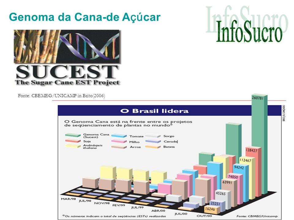 Genoma da Cana-de A çú car Fonte: CBEMEG/UNICAMP in Brito(2006)