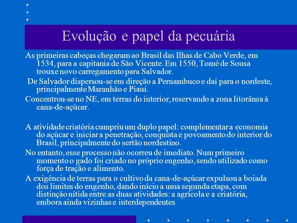 Evolução e papel da pecuária As primeiras cabeças chegaram ao Brasil das Ilhas de Cabo Verde, em 1534, para a capitania de São Vicente. Em 1550, Tomé