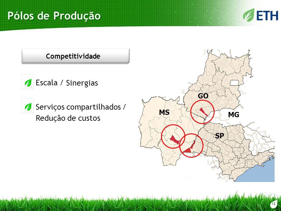 12 Pólos de Produção SP GO MS MG Escala / Sinergias Serviços compartilhados / Competitividade Redução de custos