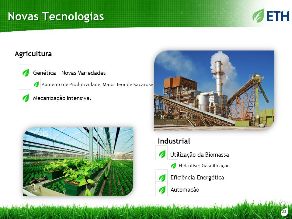 33 Novas Tecnologias Genética – Novas Variedades Aumento de Produtividade; Maior Teor de Sacarose Mecanização Intensiva. Utilização da Biomassa Eficiê