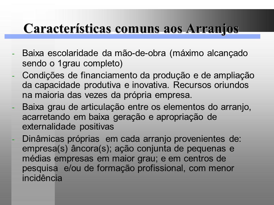 Características comuns aos Arranjos - Baixa escolaridade da mão-de-obra (máximo alcançado sendo o 1grau completo) - Condições de financiamento da prod