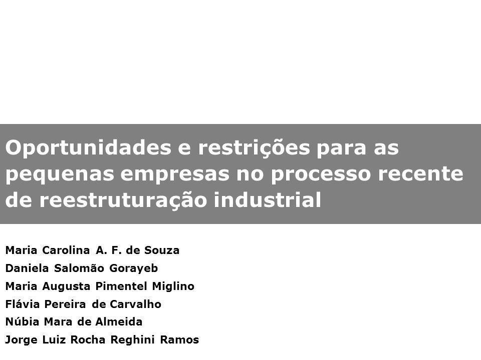 Oportunidades e restrições para as pequenas empresas no processo recente de reestruturação industrial Maria Carolina A. F. de Souza Daniela Salomão Go