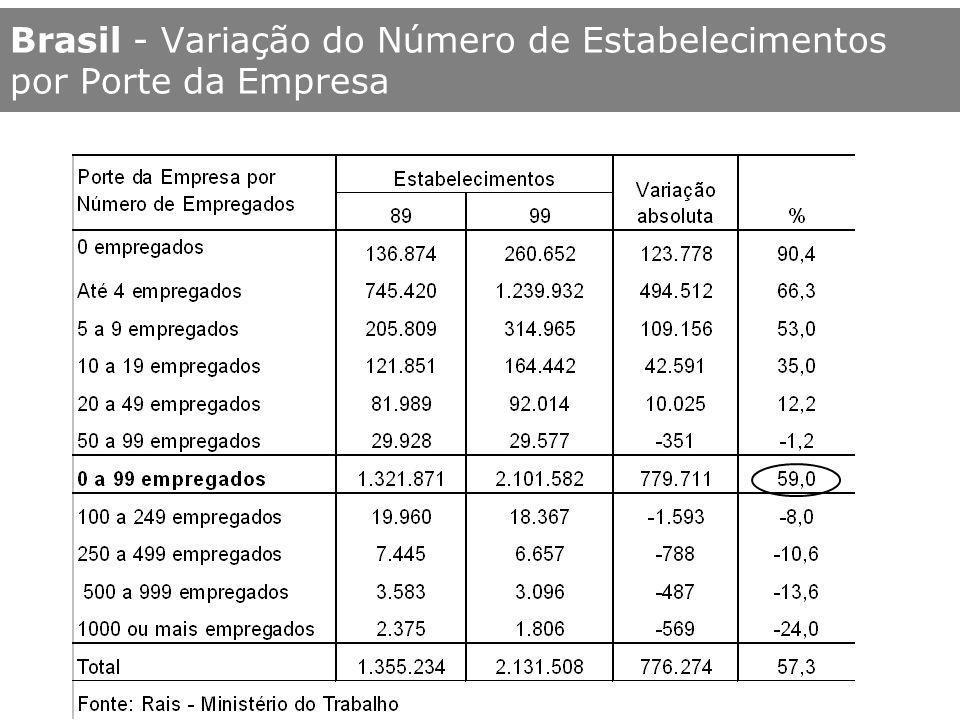 Brasil - Variação do Número de Estabelecimentos por Porte da Empresa
