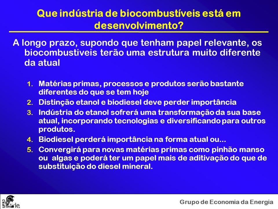 Grupo de Economia da Energia Que indústria de biocombustíveis está em desenvolvimento? A longo prazo, supondo que tenham papel relevante, os biocombus
