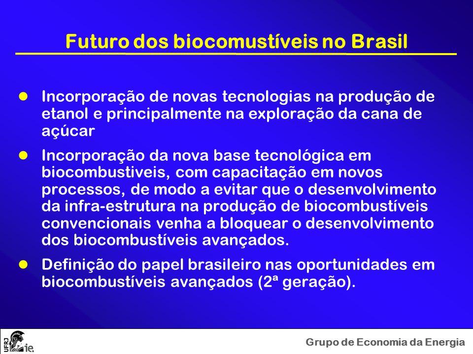 Grupo de Economia da Energia Futuro dos biocomustíveis no Brasil Incorporação de novas tecnologias na produção de etanol e principalmente na exploraçã