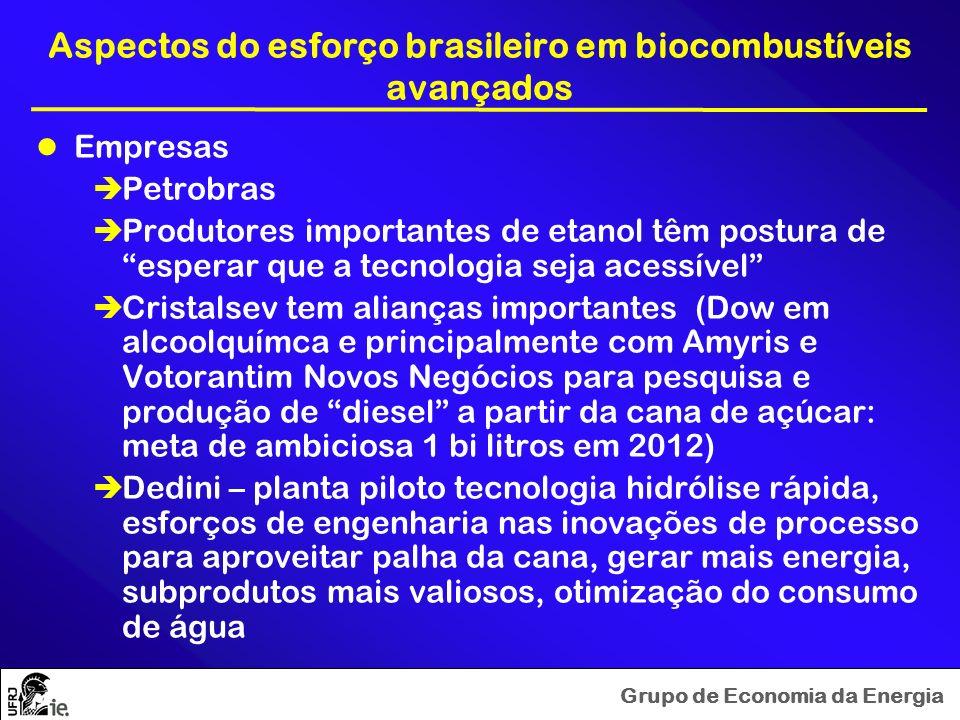 Grupo de Economia da Energia Aspectos do esforço brasileiro em biocombustíveis avançados Empresas Petrobras Produtores importantes de etanol têm postu