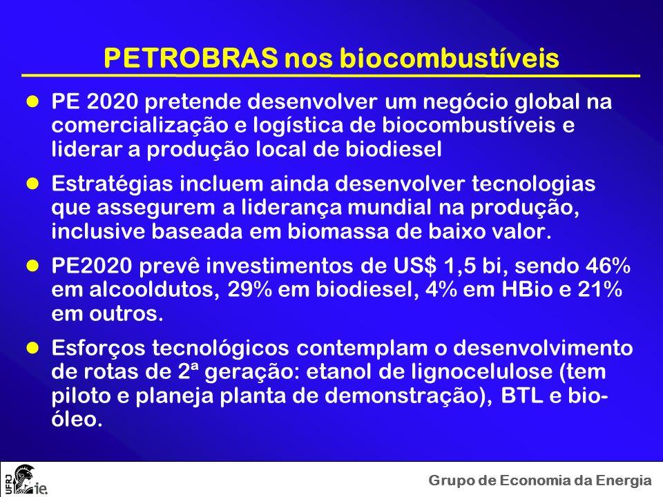 Grupo de Economia da Energia PETROBRAS nos biocombustíveis PE 2020 pretende desenvolver um negócio global na comercialização e logística de biocombust