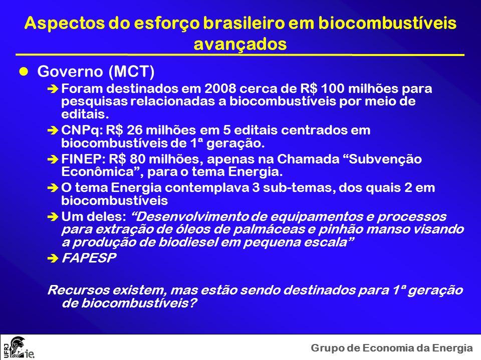 Grupo de Economia da Energia Aspectos do esforço brasileiro em biocombustíveis avançados Governo (MCT) Foram destinados em 2008 cerca de R$ 100 milhõe