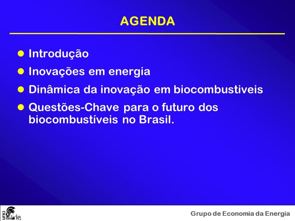 Grupo de Economia da Energia AGENDA Introdução Inovações em energia Dinâmica da inovação em biocombustiveis Questões-Chave para o futuro dos biocombus