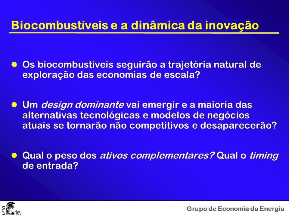 Grupo de Economia da Energia Estudando a biofuel fever