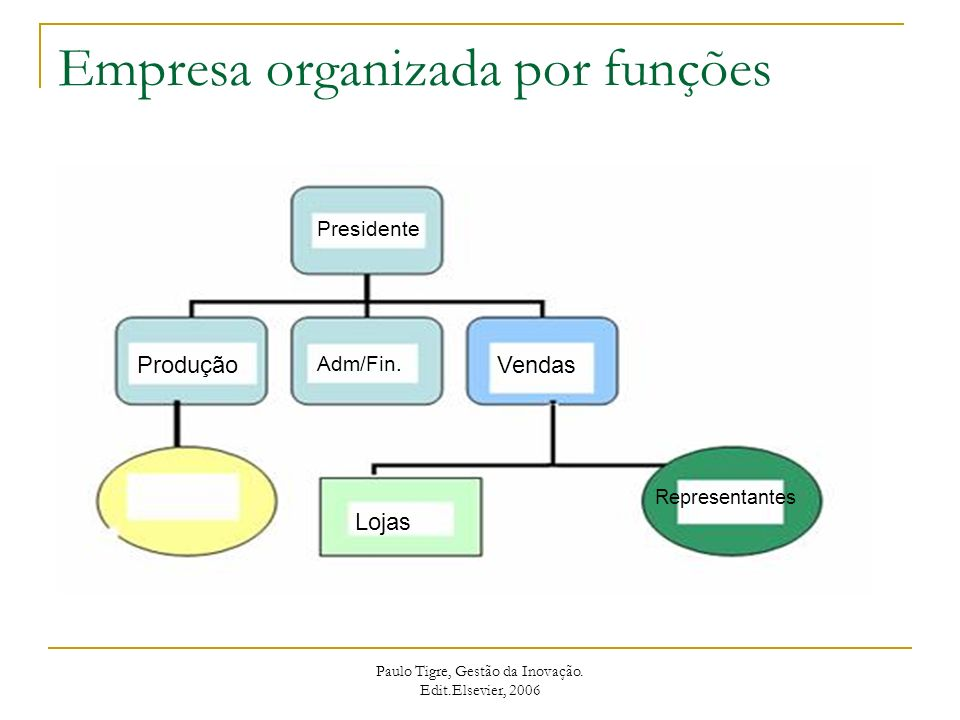 Estrutura Matricial Paulo Tigre, Gestão da Inovação. Edit.Elsevier, 2006