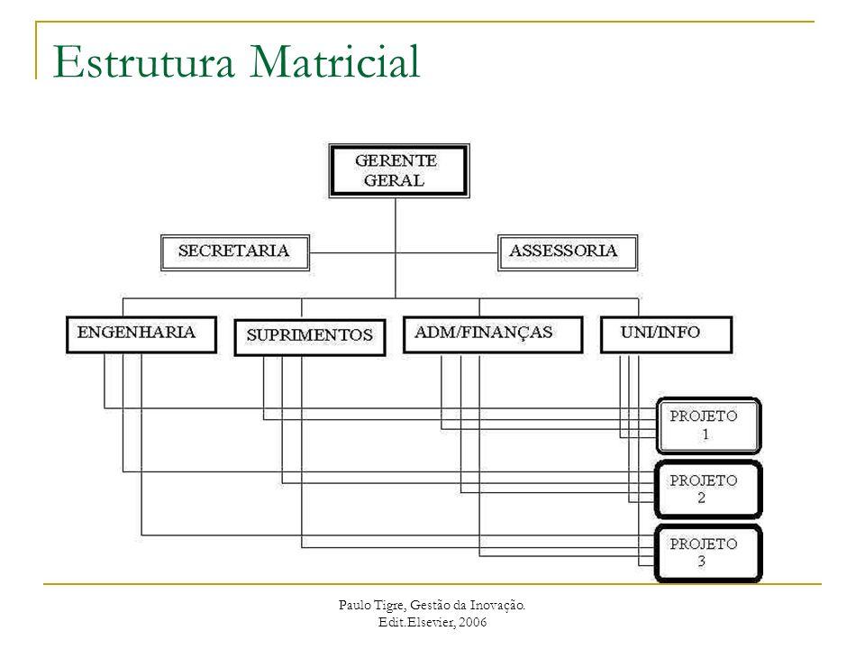 Organizações baseadas em projetos Paulo Tigre, Gestão da Inovação. Edit.Elsevier, 2006