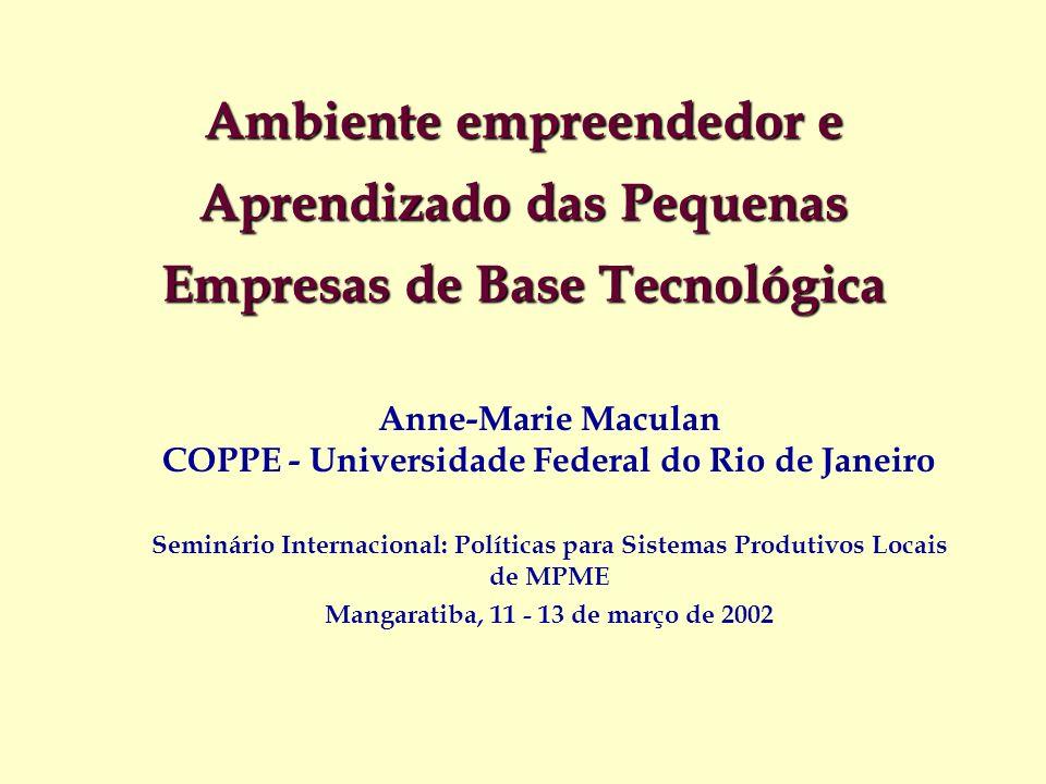 Ambiente empreendedor e Aprendizado das Pequenas Empresas de Base Tecnológica Anne-Marie Maculan COPPE - Universidade Federal do Rio de Janeiro Seminá