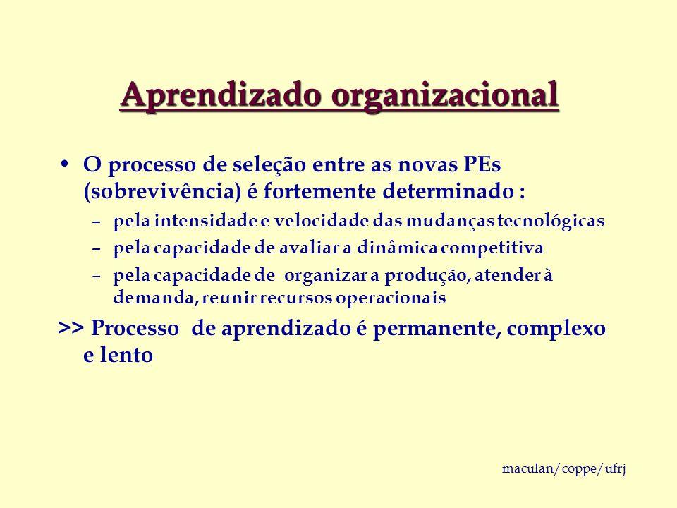 maculan/coppe/ufrj Aprendizado organizacional O processo de seleção entre as novas PEs (sobrevivência) é fortemente determinado : – pela intensidade e