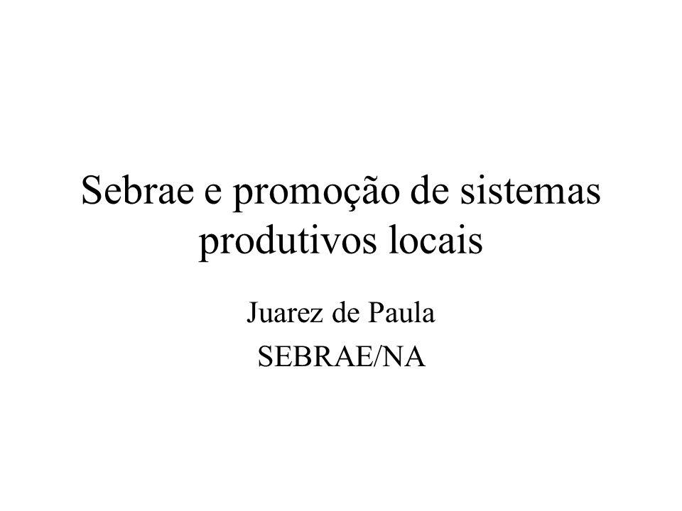Sebrae e promoção de sistemas produtivos locais Juarez de Paula SEBRAE/NA