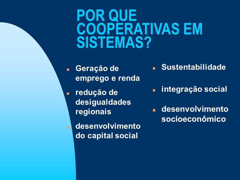 POR QUE COOPERATIVAS EM SISTEMAS? n Geração de emprego e renda n redução de desigualdades regionais n desenvolvimento do capital social n Sustentabili