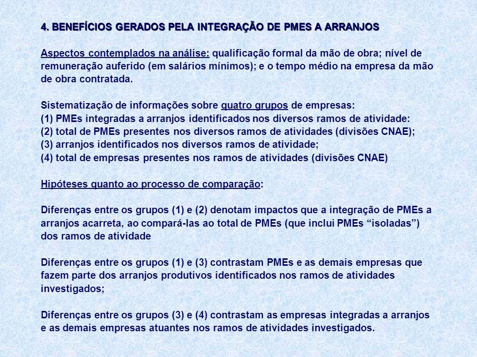 4. BENEFÍCIOS GERADOS PELA INTEGRAÇÃO DE PMES A ARRANJOS 4.