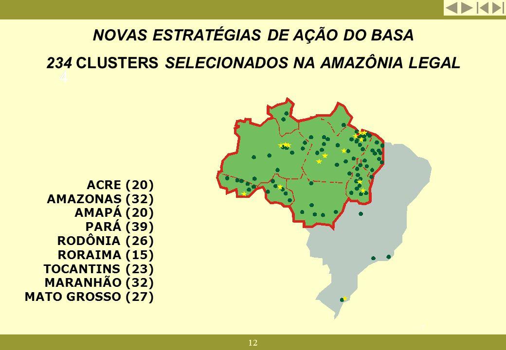 12 NOVAS ESTRATÉGIAS DE AÇÃO DO BASA 234 CLUSTERS SELECIONADOS NA AMAZÔNIA LEGAL ACRE (20) AMAZONAS (32) AMAPÁ (20) PARÁ (39) RODÔNIA (26) RORAIMA (15