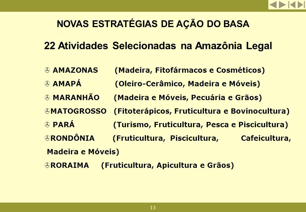 13 NOVAS ESTRATÉGIAS DE AÇÃO DO BASA 22 Atividades Selecionadas na Amazônia Legal > AMAZONAS (Madeira, Fitofármacos e Cosméticos) > AMAPÁ (Oleiro-Cerâ