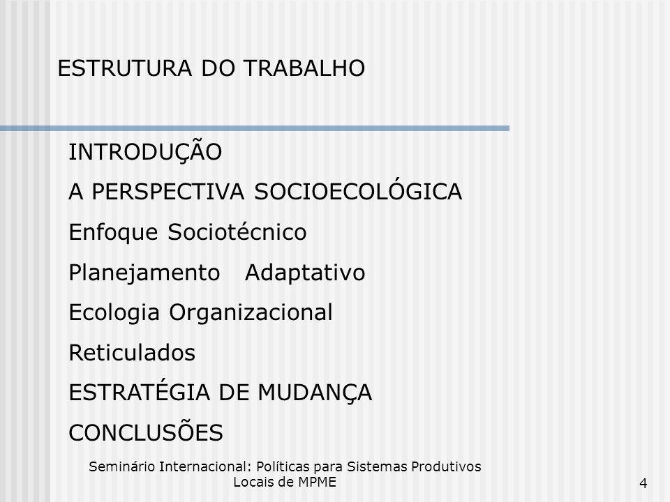 Seminário Internacional: Políticas para Sistemas Produtivos Locais de MPME 4 ESTRUTURA DO TRABALHO INTRODUÇÃO A PERSPECTIVA SOCIOECOLÓGICA Enfoque Sociotécnico Planejamento Adaptativo Ecologia Organizacional Reticulados ESTRATÉGIA DE MUDANÇA CONCLUSÕES