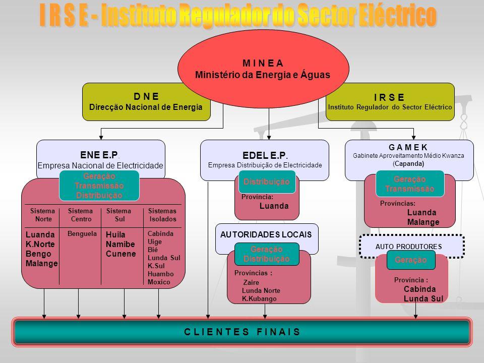 D N E Direcção Nacional de Energia ENE E.P. Empresa Nacional de Electricidade I R S E Instituto Regulador do Sector Eléctrico EDEL E.P. Empresa Distri