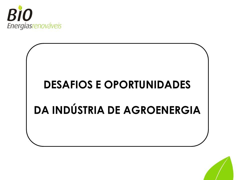 DESAFIOS E OPORTUNIDADES DA INDÚSTRIA DE AGROENERGIA