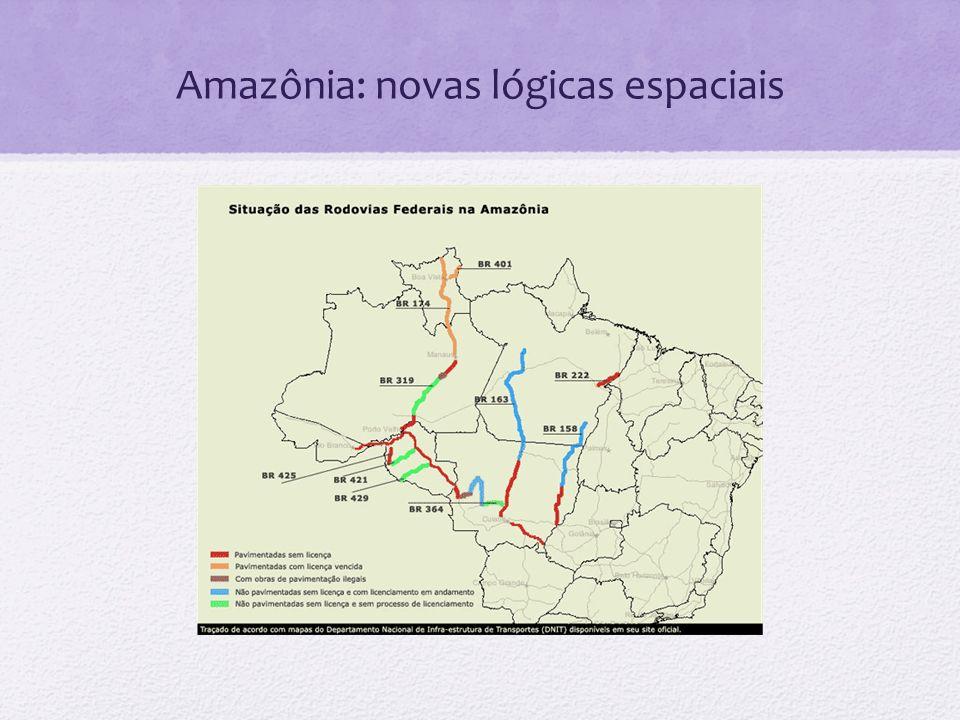Amazônia: novas lógicas espaciais