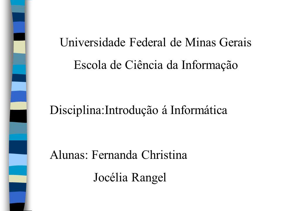 Universidade Federal de Minas Gerais Escola de Ciência da Informação Disciplina:Introdução á Informática Alunas: Fernanda Christina Jocélia Rangel