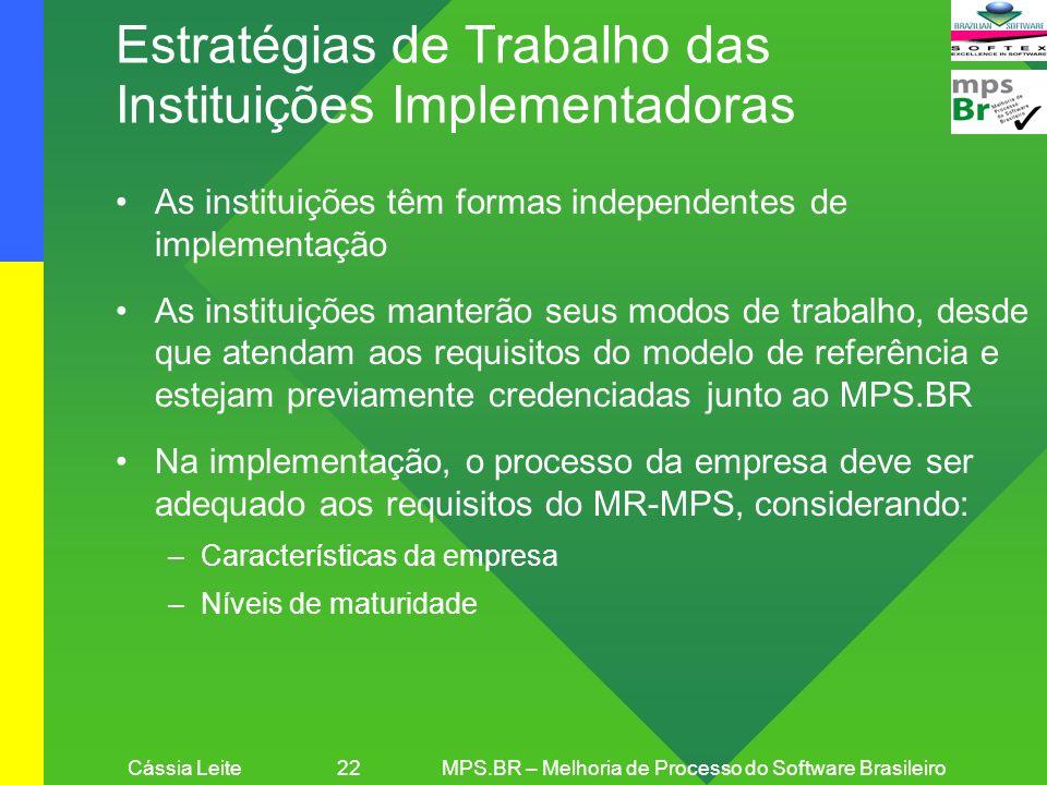 Cássia Leite 22MPS.BR – Melhoria de Processo do Software Brasileiro Estratégias de Trabalho das Instituições Implementadoras As instituições têm forma