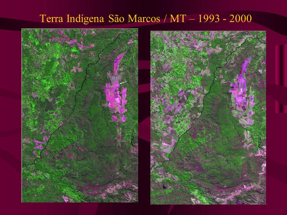 Terra Indígena São Marcos / MT – 1993 - 2000